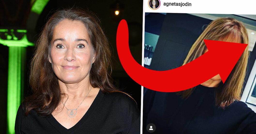 Agneta Sjödins förändring.