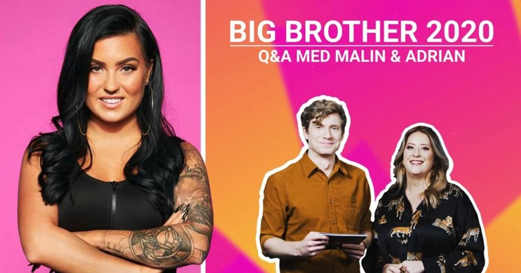 Big Brother 2020: Här är årets alla deltagare