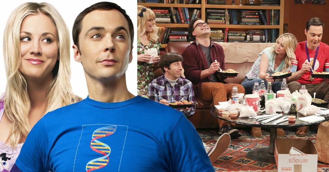 Skådespelarna i Big Bang theory.