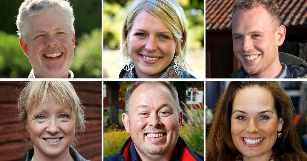 Mats Thomsson, Thilde Höök, Jonathan Antonsson, Susanne Brännemo, Niklas Lorenz och Sigrid Bergåkra i Bonde söker fru.