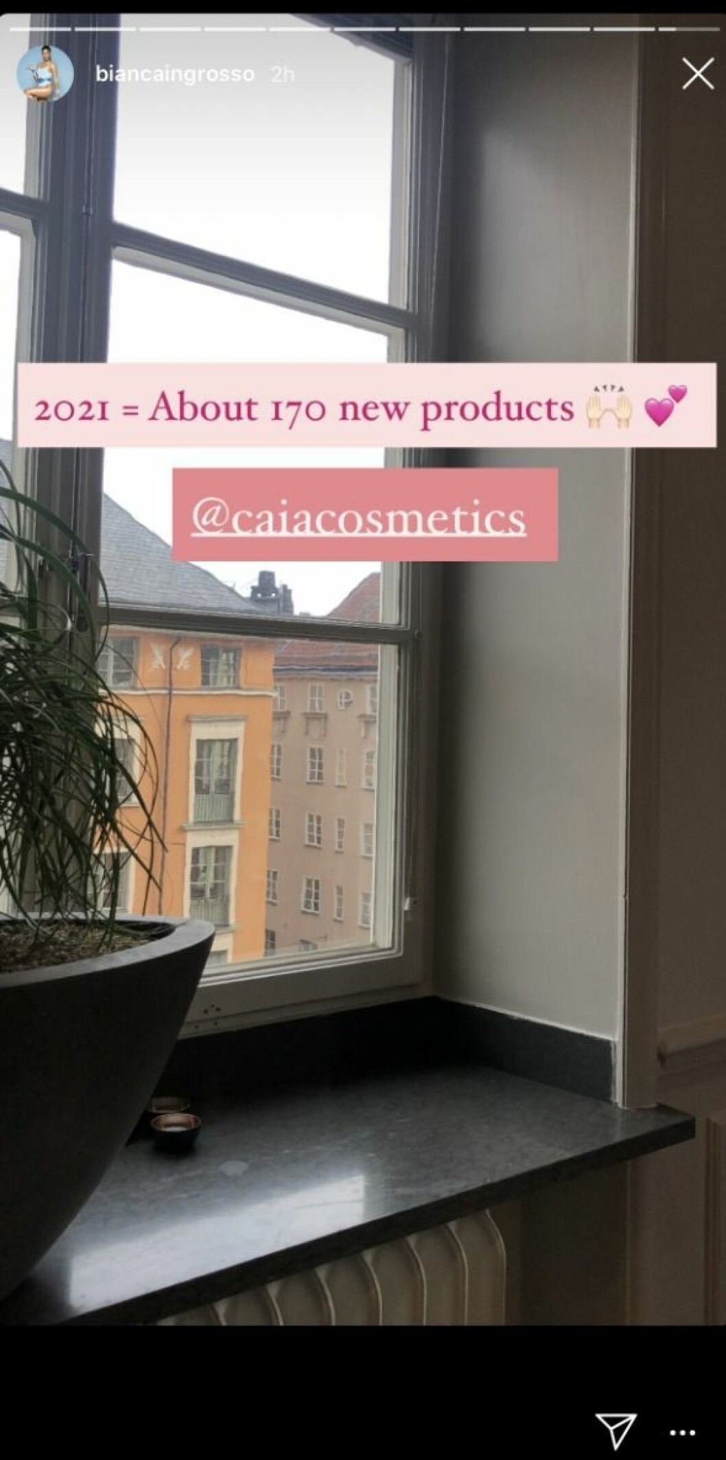 Caia cosmetics produkter