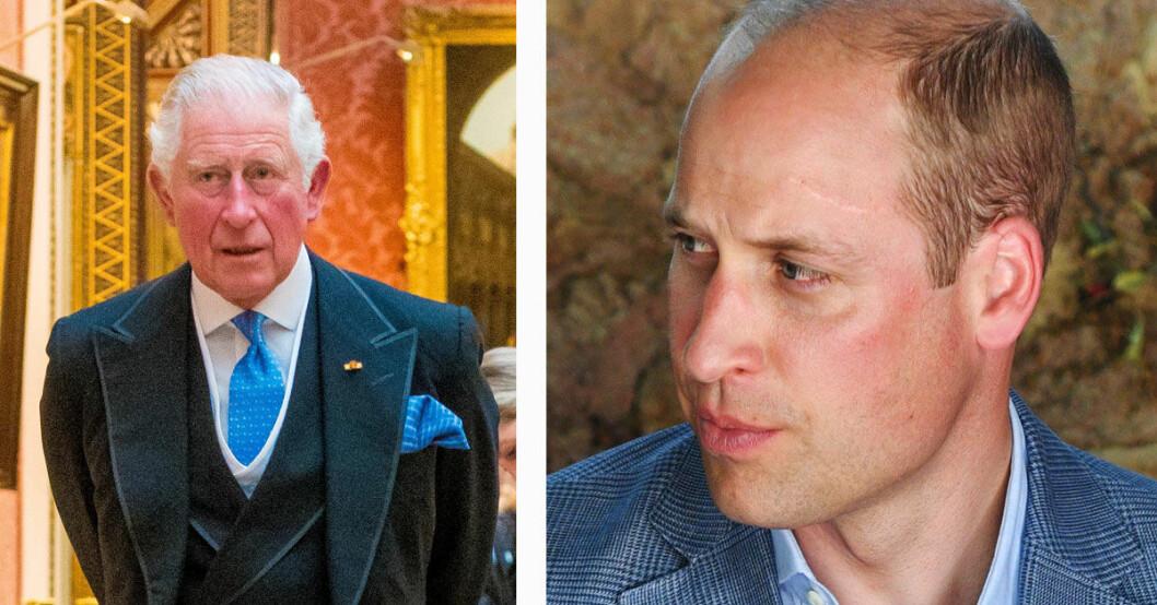 Prins Charles och prins William
