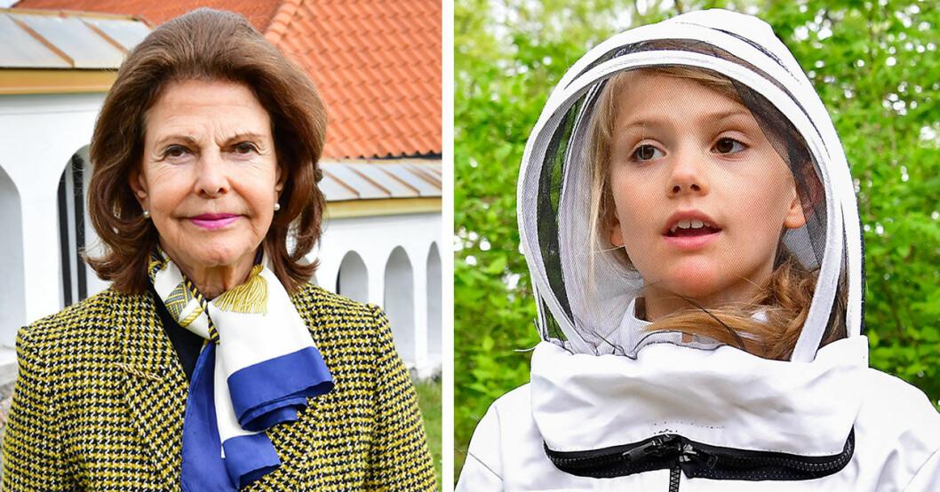 Drottning Sivlias besked om barnbarnen.