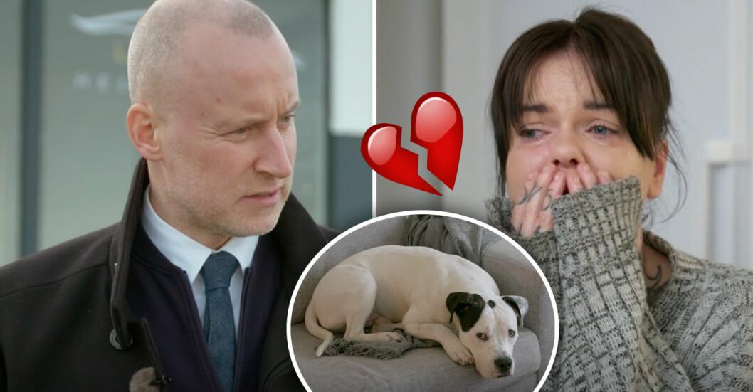 Emma gråter när Lyxfällans kontrakt åker fram och hon riskerar att se sin hund säljas.