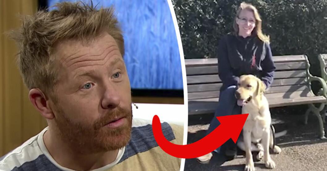Hundcoachen Henrik Steen avslöjar i TV4:s Nyhetsmorgon att hunden Solo fått ett jobb.