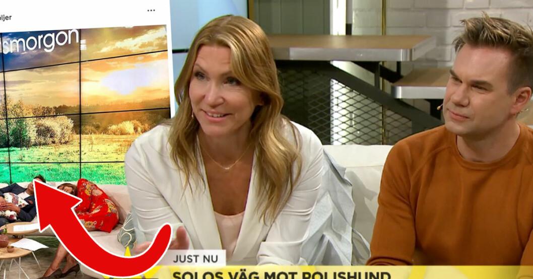 Jenny Alversjö och Anders Pihlblad i Nyhetsmorgon på TV4