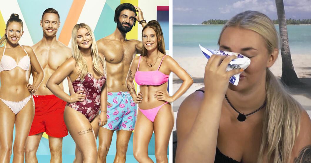 Därför har TV4 tagit beslutet att inte göra något för att ta bort getingarna på Love Island.
