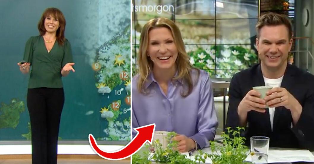 Jenny Alversjö och Anders Pihlblad skrattade efter att meteorolog Madeleine Wester glömt deras namn i Nyhetsmorgon TV4.