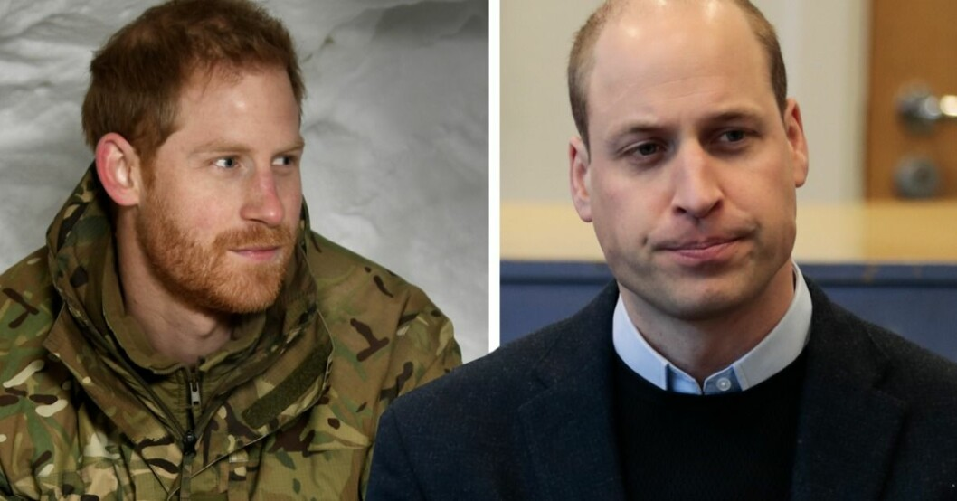 Prins Harry & prins William