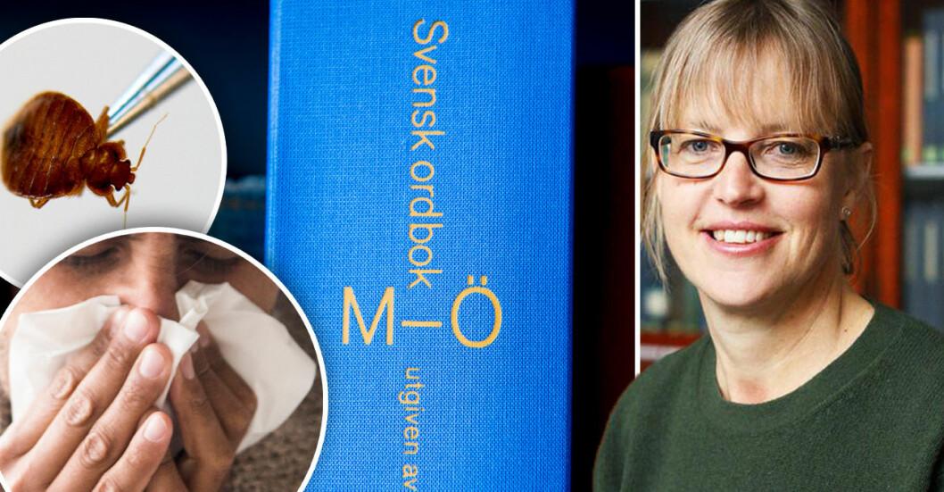 """Nu uppdaterar forskarna """"Svensk ordbok"""". Då ryker ord som väggmadame och näskatarr."""
