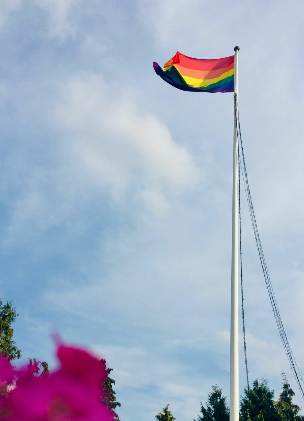 Pride-flaggan vajade i vinden under bröllopsfesten.
