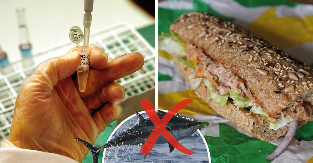 DNA-test visar vad som finns i Subway-smörgåsen.